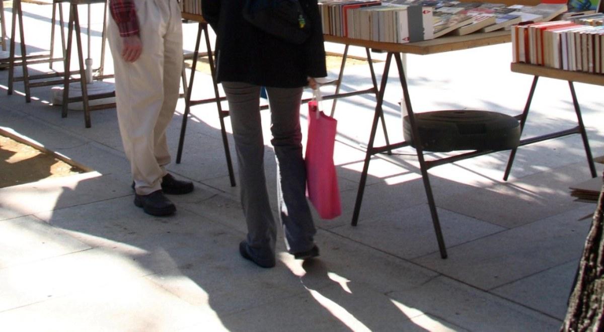 detalle-rígola-en-calle-Claudio-Moyano-Madrid