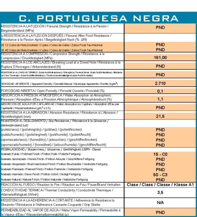 calzada-portuguesa-negra