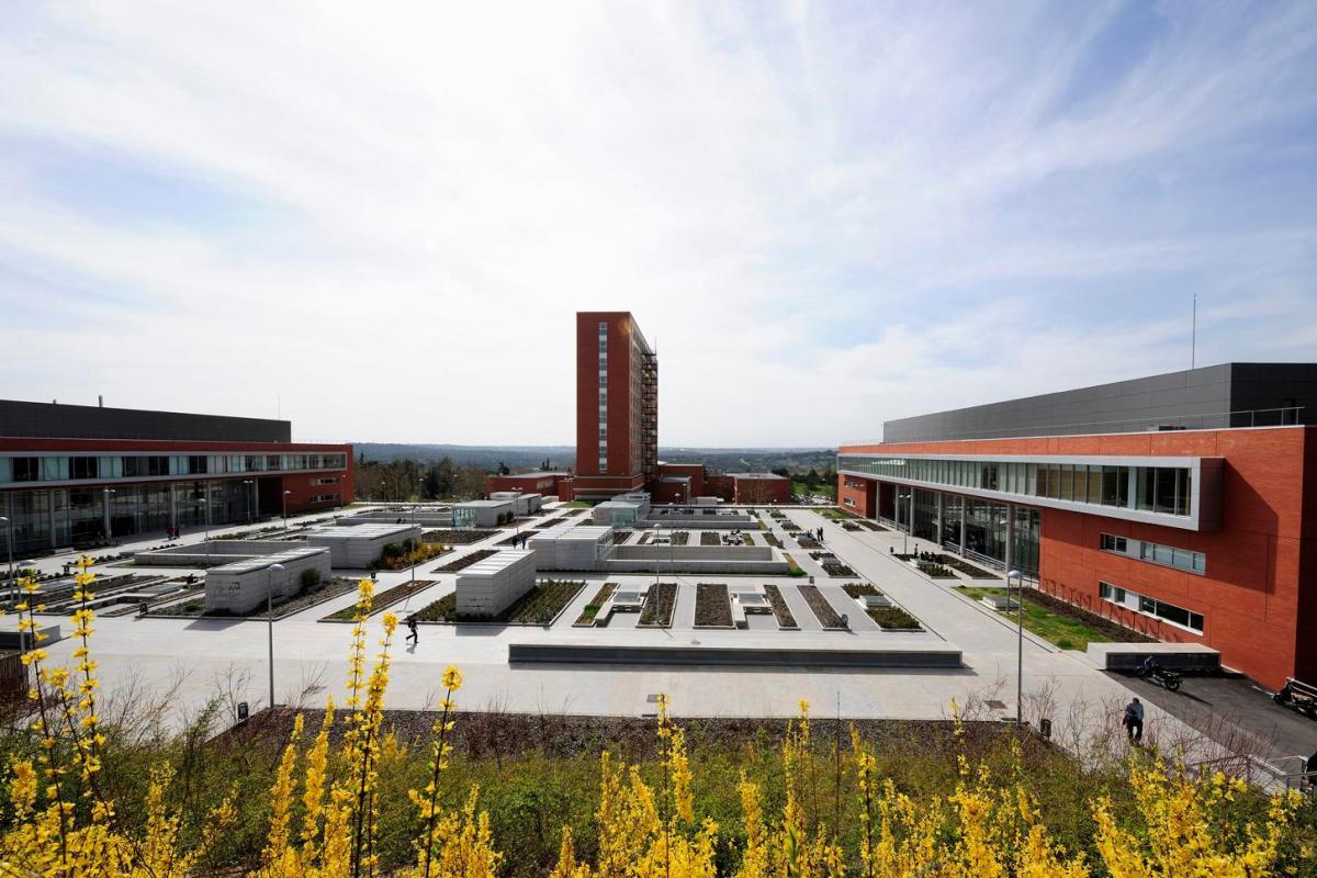 universidad-filología-derecho-madrid-plaza